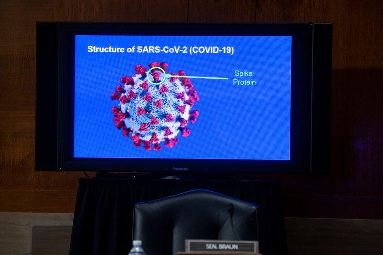 La estructura del coronavirus SARS-CoV-2 (Michael Reynolds/Pool via REUTERS)
